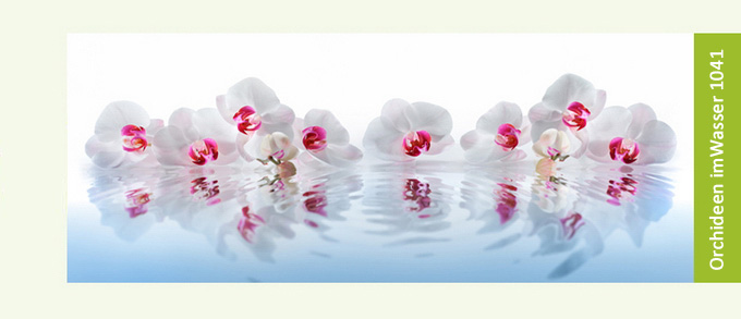 https://kuechen-rueckwand.com/media/configurator/orchideenimwasser1041-kuechenrueckwand-on.jpg