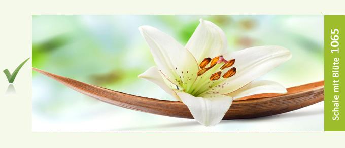 Schale mit Blüte