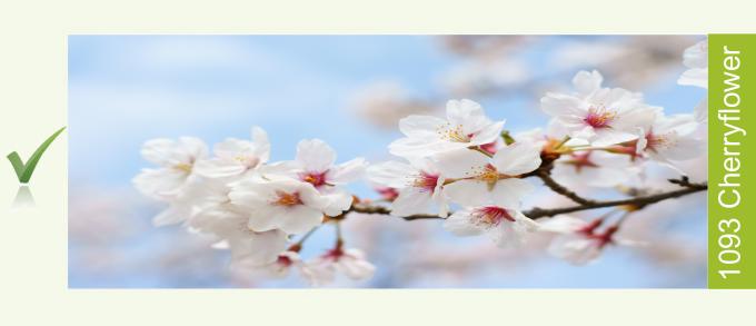 Cherryflower