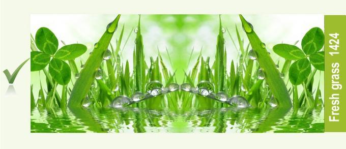 1424_fresh_grass