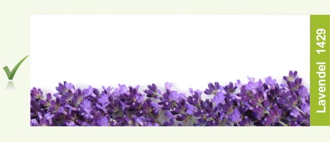1429_Lavendel