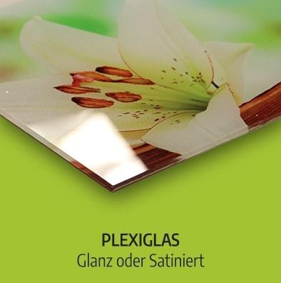 Küchenrückwand Plexisglas glanz satiniert